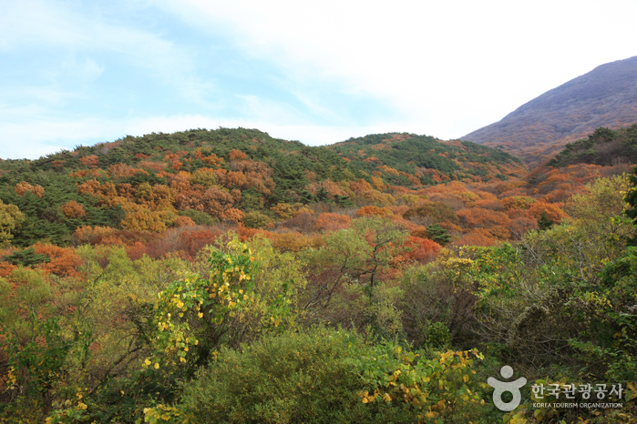 Mudeungsan National Park (무등산국립공원)