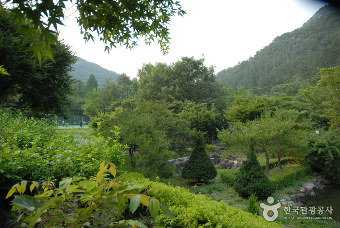 Gosan Recreation Forest (고산자연휴양림)
