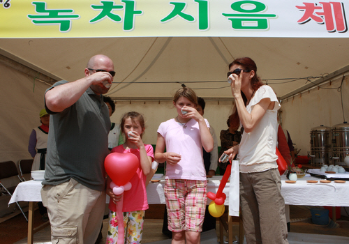 Boseong Green Tea Festival (보성 다향제)