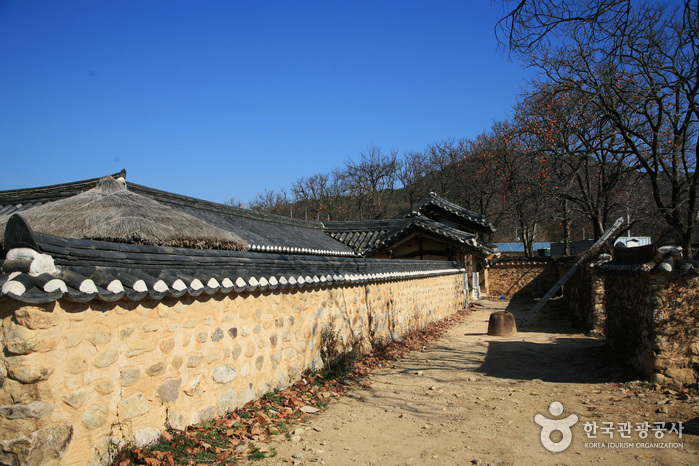 House of Seon Byeong-guk (Adanggol) (선병국가옥 - 아당골)