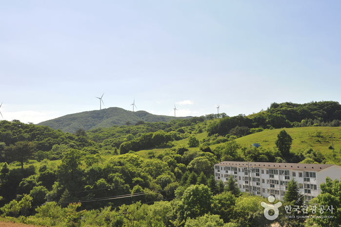 Eco Green Campus (Former, Daegwallyeong Samyang Ranch (에코그린 캠퍼스, 구 대관령 삼양목장)