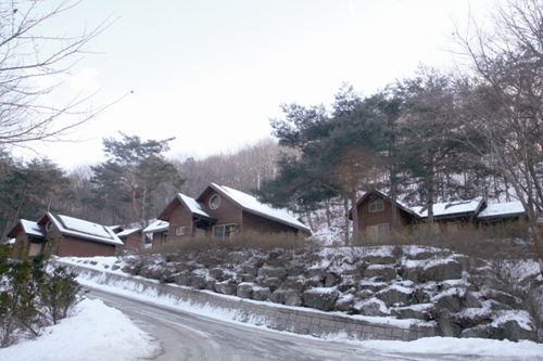 Yonghyeon Natural Recreation Forest (용현자연휴양림)