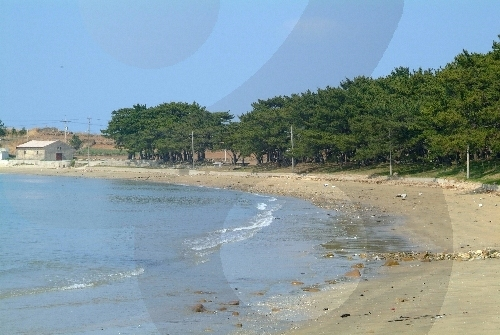Cheongsan Jiri Beach (also called Jiri Cheongsong Beach), (청산 지리해수욕장)