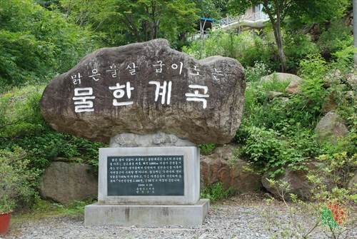 Mulhan Valley (물한계곡)