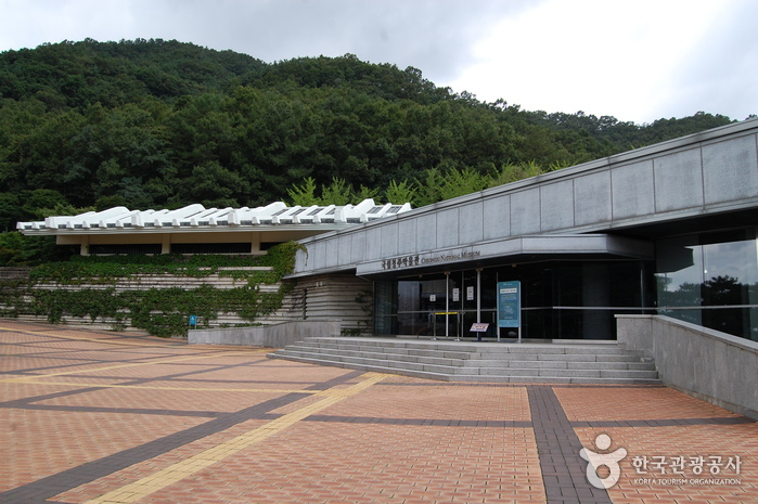 Cheongju National Museum (국립청주박물관)