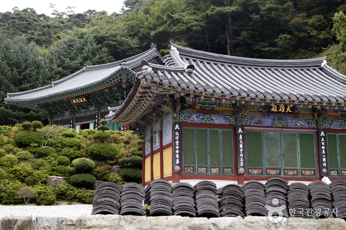 Sobaeksan National Park (Gyeongbuk Area) (소백산국립공원(경북))