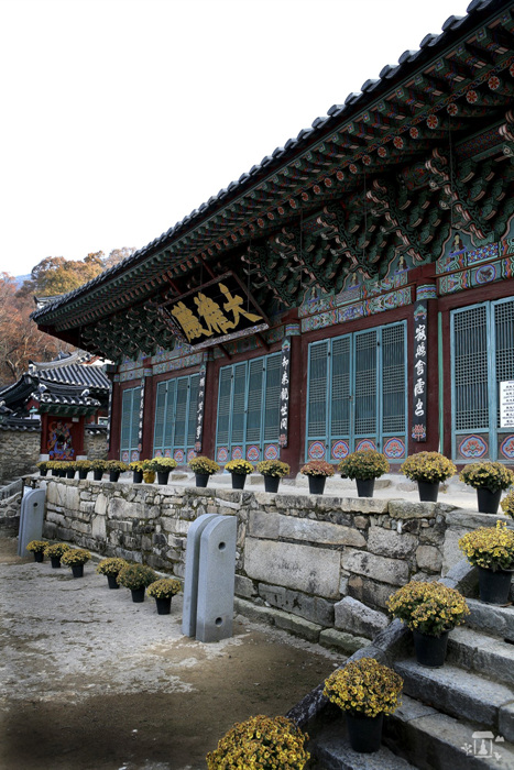 Trash: Gapsa Temple (갑사)