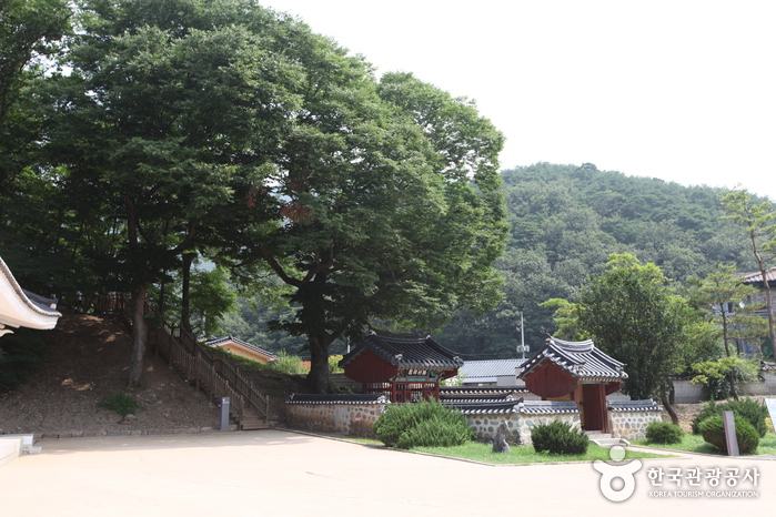 Jangneung (莊陵) (Located in Yeongwol, Gangwon-do) [UNESCO World Heritage] (영월 장릉 [유네스코 세계문화유산])