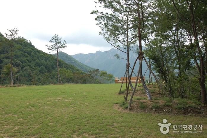 Daedunsan Recreation Forest (대둔산자연휴양림)
