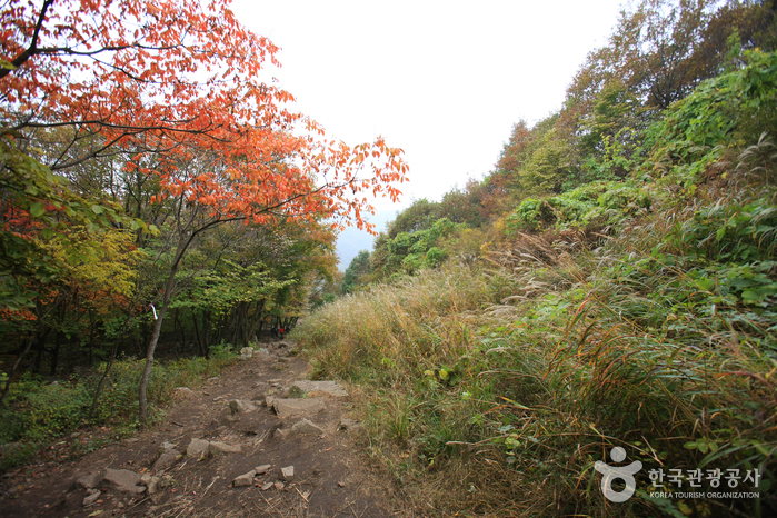 Myeongseongsan Mountain (명성산)