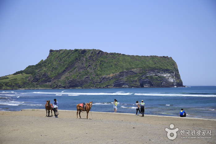 Seongsan Ilchulbong Peak [UNESCO World Heritage] (성산일출봉)