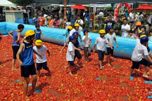 Hwacheon Tomato Fest...