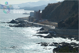 Samcheok Port – Along Saecheonnyeon Coastal Road (삼척항 - 새천년도로변)