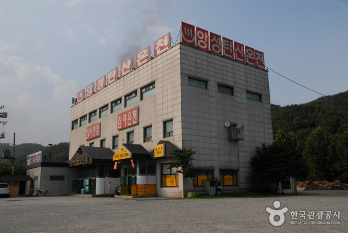 Angseong Carbonate Hot Springs (앙성탄산온천)