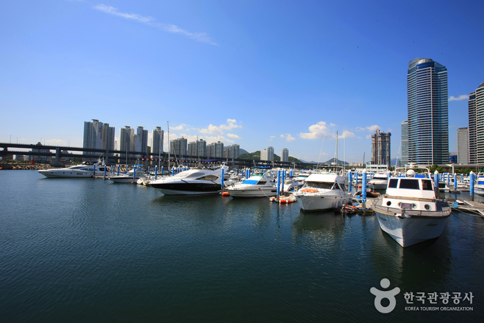 Suyeong Bay Yachting Center (수영만 요트경기장)